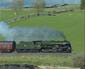 46115 near Shap village - 9 May 09